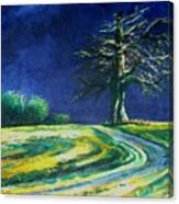 Light On A Tree Canvas Print