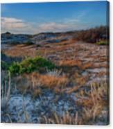 Light On The Dunes Canvas Print