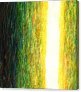 Light Picture 233 Canvas Print