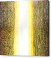 Light Picture 240 Canvas Print