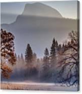 Light Rays In Yosemite Ground Fog Canvas Print