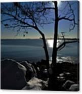 Light Snow And Stillness Canvas Print
