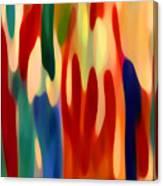 Light Through Flowers Canvas Print