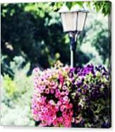 Lighted Flowers Canvas Print