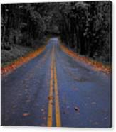 Lighter Paths Canvas Print