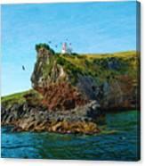 Lighthouse On Cliff Dunedin New Zealand Canvas Print
