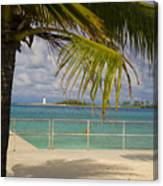 Lighthouse Under Palm In Bahamas Canvas Print