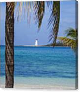 Lighthouse Under Palm Canvas Print
