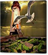 Lighthouse With Seagulls Canvas Print