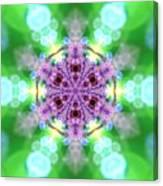 Lightmandala 6 Star 3 Canvas Print