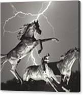 Lightning At Horse World Canvas Print