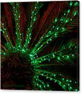 Lights Beneath The Fronds Canvas Print
