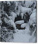 A Snowy Secret Garden Canvas Print