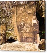 Like Ancient Graffiti  Canvas Print