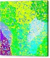 Lilac Lane Canvas Print