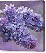 Lilac Spring Canvas Print