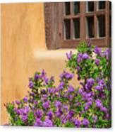 Lilacs And Adobe Canvas Print