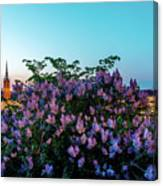 Lilacs And Sunset To Blue Hour Transition Over Gamla Stan In Stockholm Canvas Print