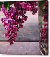 Lilacs In A Vase Canvas Print