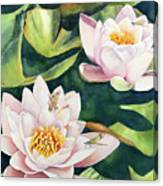 Lilies And Dragonflies Canvas Print