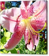 Lilies Art Prints Pink Lily Flowers 2 Giclee Prints Baslee Troutman Canvas Print