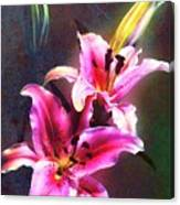 Lilies At Night Canvas Print