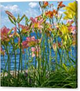 Lilies At The Waterfront Canvas Print