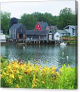 Lilies By The Bay, Cape Porpoise Me Canvas Print