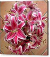 Lilies Gathered On Tile Canvas Print