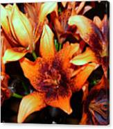 Lilies In The Shadow Canvas Print