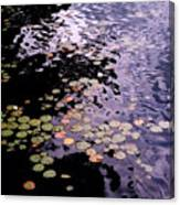Lilies In The Water Canvas Print