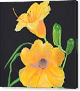 Lilies Of September Canvas Print