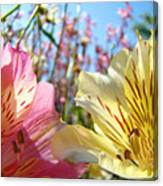 Lilies Pink Yellow Lily Flowers Canvas Art Prints Baslee Troutman Canvas Print