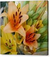 Lillies - Peach And Yellow Colors Canvas Print