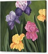 Lill's Garden Canvas Print