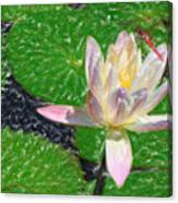 Lilly Canvas Print