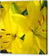 Lilly Flowers Art Prints Yellow Lilies Floral Baslee Troutman Canvas Print