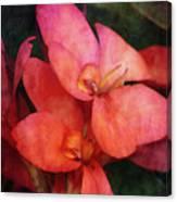 Lily 1106 Idp_2 Canvas Print