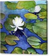 Lily At Little Spider Lake Canvas Print