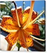 Lily Flower Artwork Orange Lilies 3 Giclee Art Prints Baslee Troutman Canvas Print