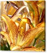 Lily Flower Garden Art Prints Canvas Floral Lilies Baslee Troutman Canvas Print