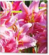 Lily Garden Floral Art Prints Pink Lilies Baslee Troutman Canvas Print