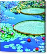 Lily Pond 2 Canvas Print