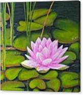 Lily Pond And Pink Canvas Print