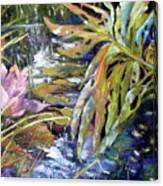 Lily Pond Light Dance Canvas Print