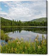 Lily Pond - White Mountains, New Hampshire Canvas Print