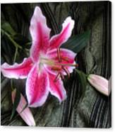 Lily Stem On Green Brocade Canvas Print