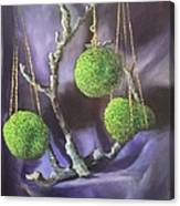 Lime And Violet In Harmony Canvas Print