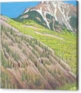 Lime Creek Canyon Canvas Print