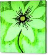 Lime Daisy Canvas Print